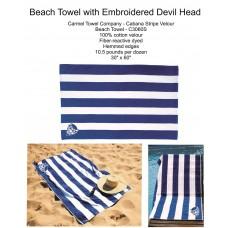 Dream Big QHS Beach Towel