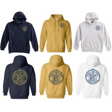 Pullover Hoodie with QND Logo